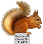 Squirrel group logo